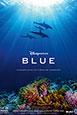 Blue V.Fran.